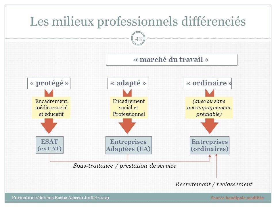 Les milieux professionnels différenciés Encadrement social et Professionnel « protégé »« ordinaire »« adapté » Encadrement médico-social et éducatif (
