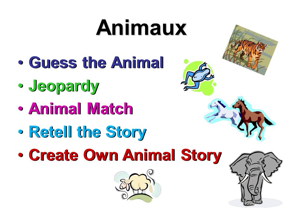Animaux Guess the Animal Jeopardy Animal Match Retell the Story Create Own Animal Story Guess the Animal Jeopardy Animal Match Retell the Story Create Own Animal Story