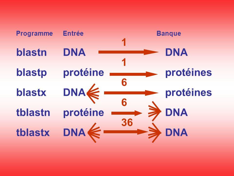 ProgrammeEntréeBanque 1 blastnDNA DNA 1 blastpprotéine protéines 6 blastxDNA protéines 6 tblastnprotéine DNA 36 tblastxDNA DNA