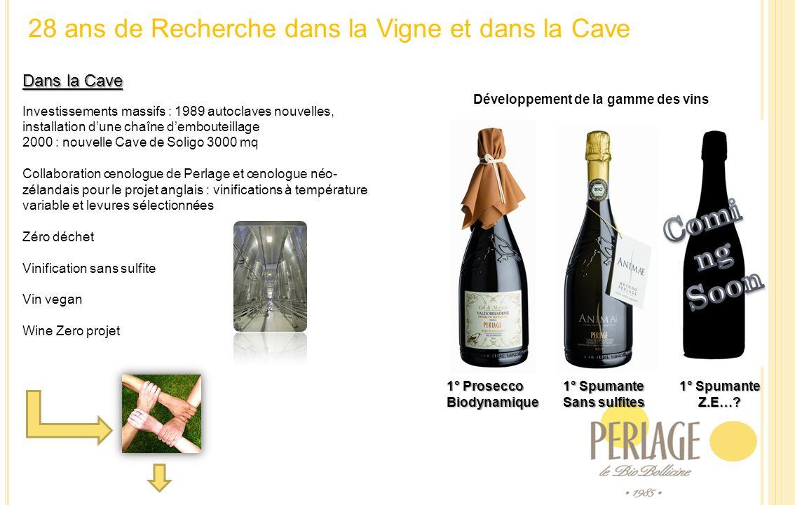 28 ans de Recherche dans la Vigne et dans la Cave Dans la Cave Investissements massifs : 1989 autoclaves nouvelles, installation dune chaîne demboutei