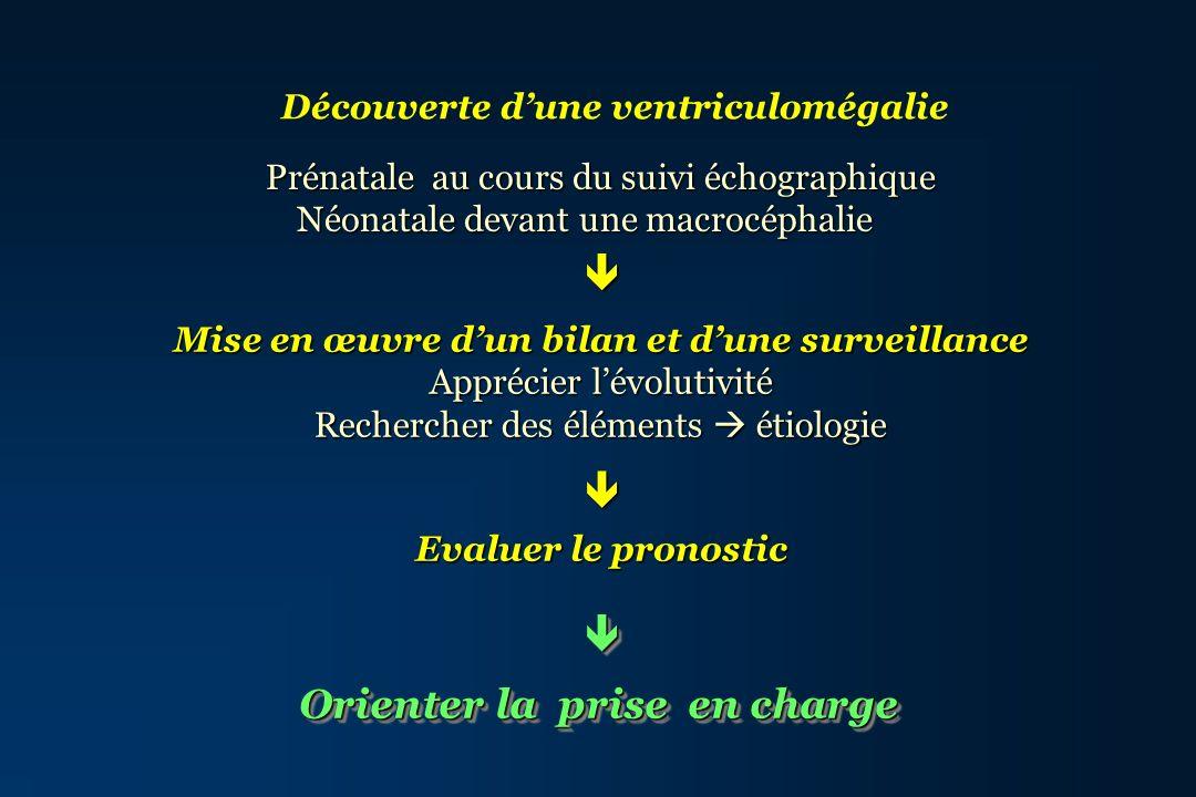 Bilan dune ventriculomégalie Anamnèse: Anamnèse: - Déroulement grossesse - Déroulement grossesse - Pathologie maternelle - Pathologie maternelle - Antécédents de ventriculomégalie, RM - Antécédents de ventriculomégalie, RM pathologie neurologique, pathologie neurologique, - Fausses-couches à répétition - Fausses-couches à répétition Caryotype Caryotype Bilan infectieux et/ou coagulation Bilan infectieux et/ou coagulation Examen Foetoplacentaire Examen Foetoplacentaire Type de ventriculomégalie Type de ventriculomégalie Anomalies associées du SNC Anomalies associées du SNC Type de ventriculomégalie Type de ventriculomégalie Anomalies associées du SNC Anomalies associées du SNC Examen neuropathologique Examen neuropathologique Mécanismes pathogéniques Mécanismes pathogéniques Orientation étiologique Orientation étiologique Mécanismes pathogéniques Mécanismes pathogéniques Orientation étiologique Orientation étiologique