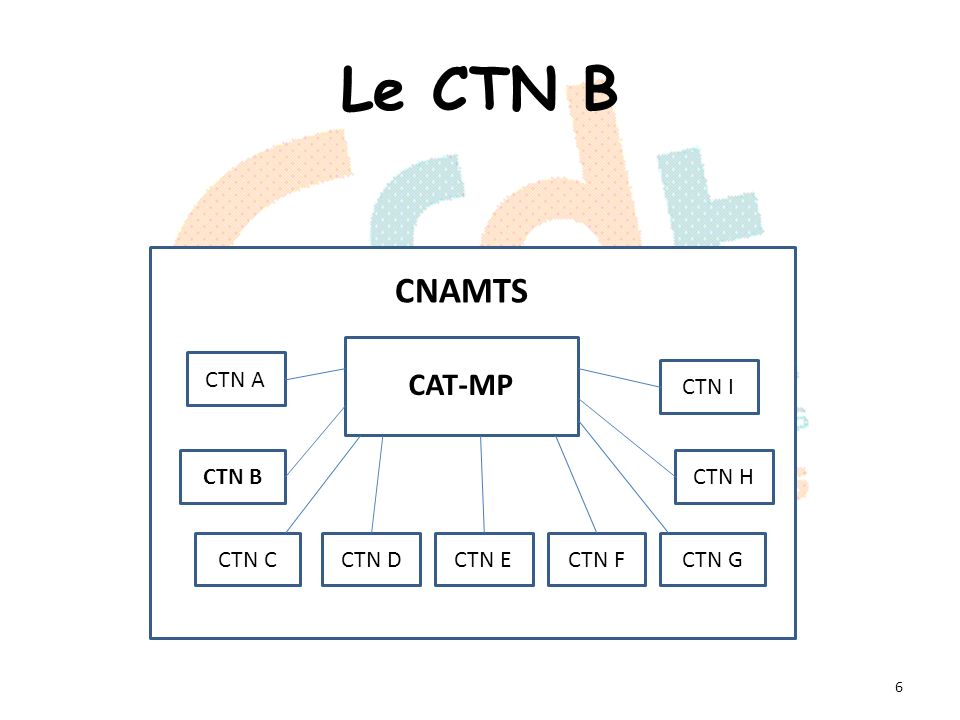 Le CTN B 6 CAT-MP CNAMTS CTN A CTN B CTN CCTN DCTN ECTN FCTN G CTN H CTN I