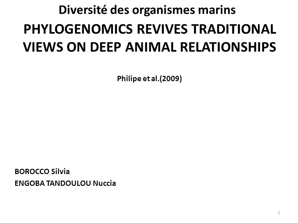 PHYLOGENOMICS REVIVES TRADITIONAL VIEWS ON DEEP ANIMAL RELATIONSHIPS Philipe et al.(2009) BOROCCO Silvia ENGOBA TANDOULOU Nuccia 1 Diversité des organismes marins