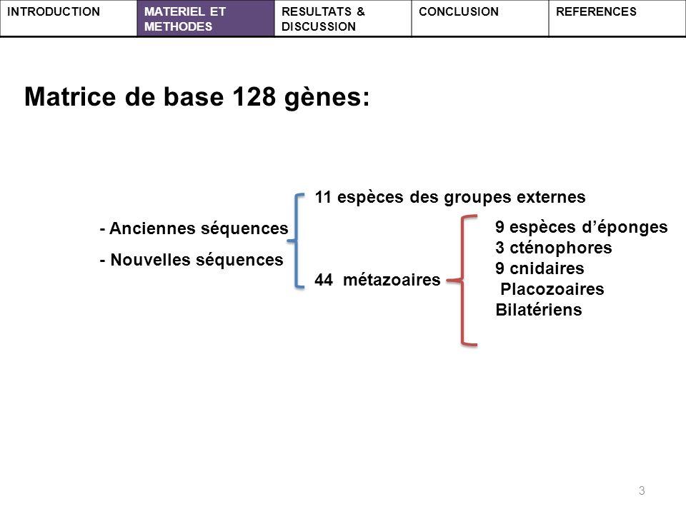 3 INTRODUCTIONMATERIEL ET METHODES RESULTATS & DISCUSSION CONCLUSIONREFERENCES 9 espèces déponges 3 cténophores 9 cnidaires Placozoaires Bilatériens Matrice de base 128 gènes: - Anciennes séquences - Nouvelles séquences 11 espèces des groupes externes 44 métazoaires