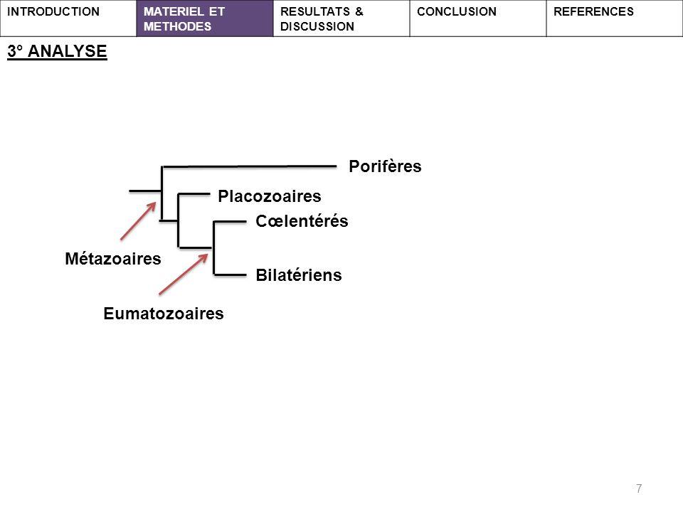 7 3° ANALYSE INTRODUCTIONMATERIEL ET METHODES RESULTATS & DISCUSSION CONCLUSIONREFERENCES Porifères Cœlentérés Placozoaires Bilatériens Eumatozoaires Métazoaires