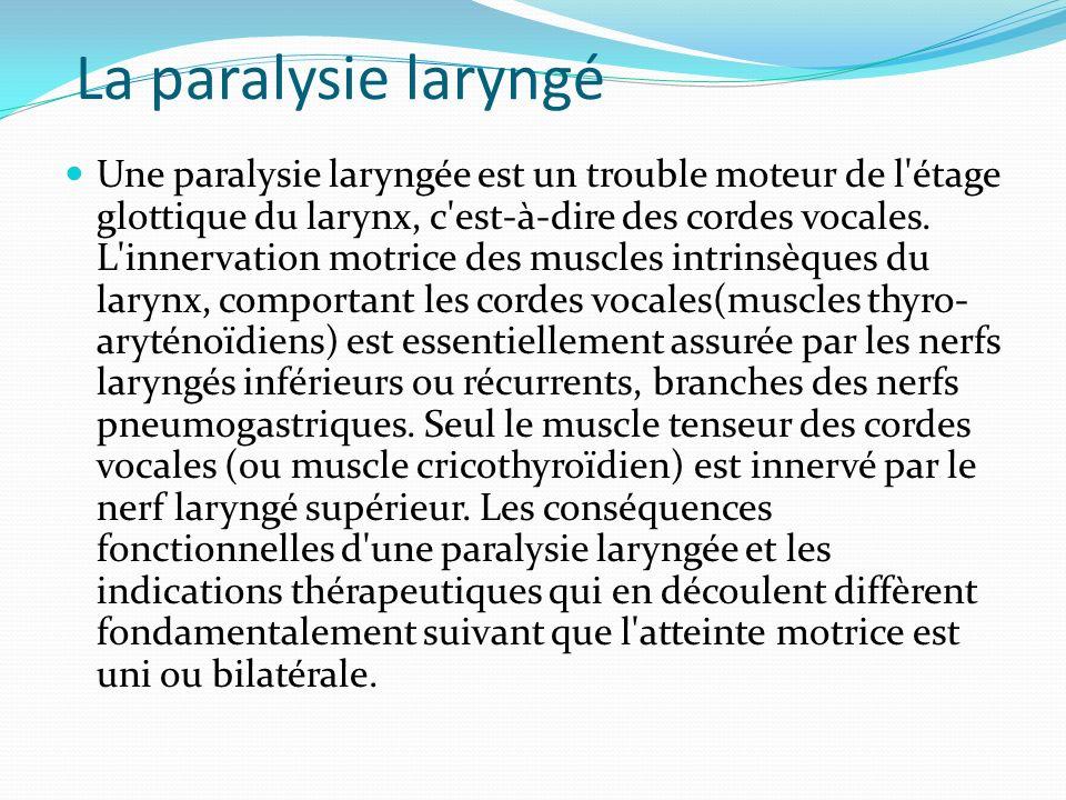 La paralysie laryngé Une paralysie laryngée est un trouble moteur de l'étage glottique du larynx, c'est-à-dire des cordes vocales. L'innervation motri