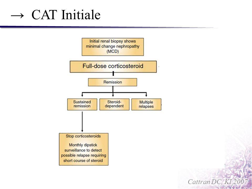 CAT Initiale