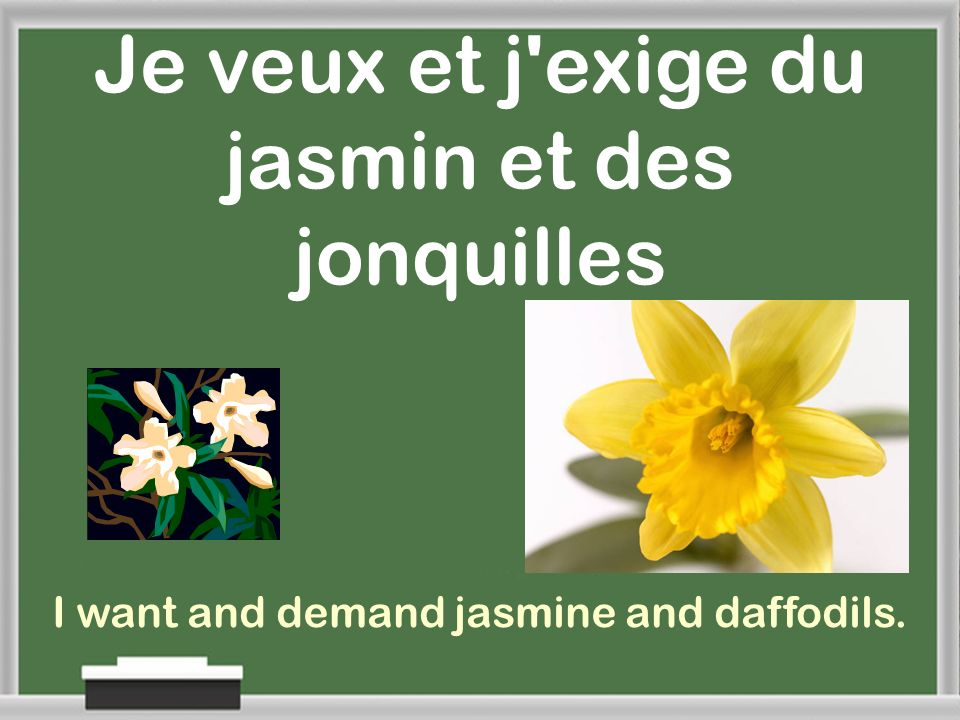 Je veux et j exige du jasmin et des jonquilles I want and demand jasmine and daffodils.