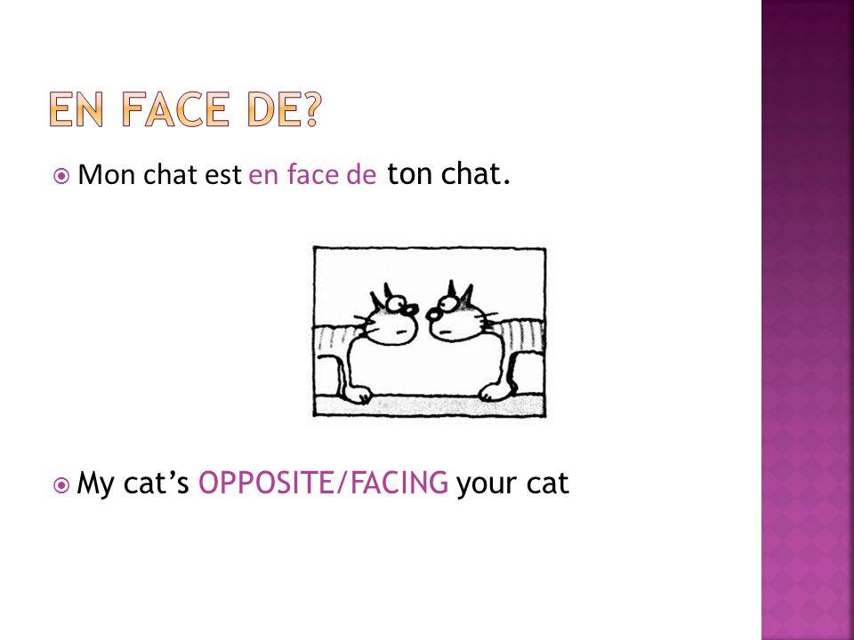 Mon chat est en face de ton chat. My cats OPPOSITE/FACING your cat