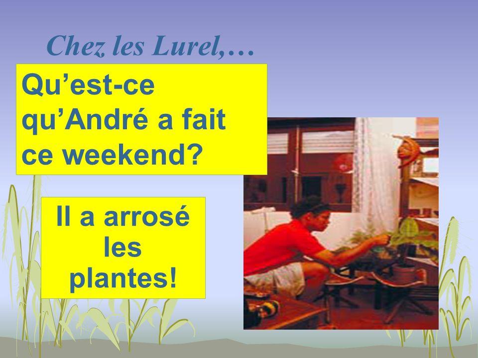 Chez les Lurel,… Il a arrosé les plantes! Quest-ce quAndré a fait ce weekend?