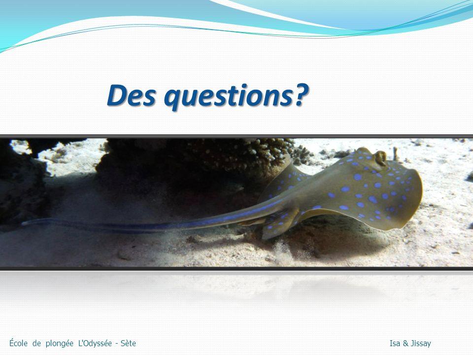 Des questions? École de plongée L Odyssée - Sète Isa & Jissay