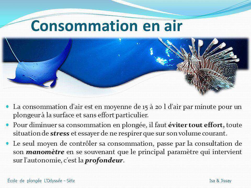 Consommation en air La consommation d air est en moyenne de 15 à 20 l d air par minute pour un plongeur à la surface et sans effort particulier.