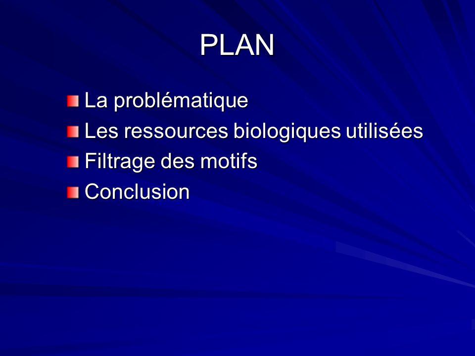 PLAN La problématique Les ressources biologiques utilisées Filtrage des motifs Conclusion