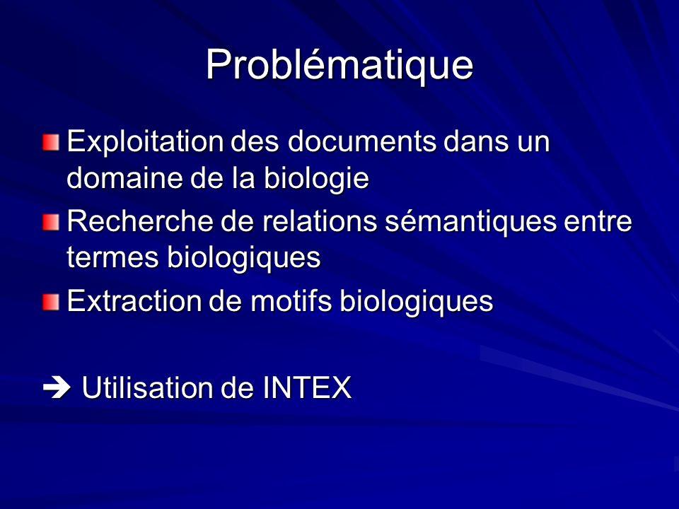 Problématique Exploitation des documents dans un domaine de la biologie Recherche de relations sémantiques entre termes biologiques Extraction de motifs biologiques Utilisation de INTEX Utilisation de INTEX