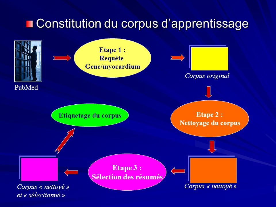 Constitution du corpus dapprentissage Corpus « nettoyé » et « sélectionné » Etape 1 : Requête Gene/myocardium Corpus original Etape 2 : Nettoyage du corpus Corpus « nettoyé » PubMed Etape 3 : Sélection des résumés Etiquetage du corpus