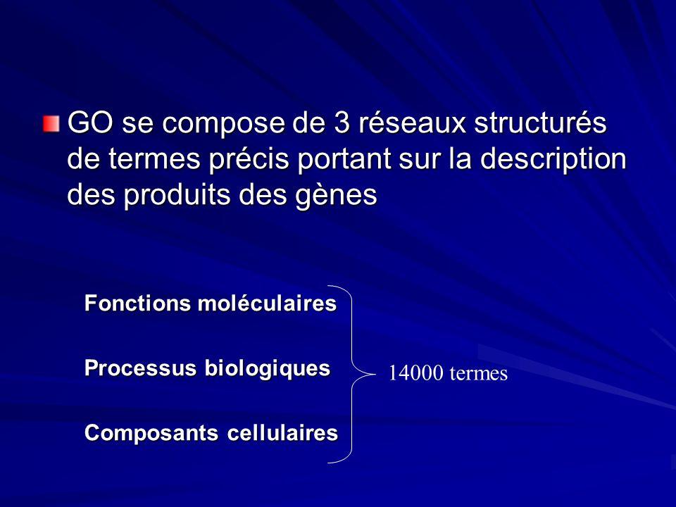 GO se compose de 3 réseaux structurés de termes précis portant sur la description des produits des gènes Fonctions moléculaires Processus biologiques Composants cellulaires 14000 termes
