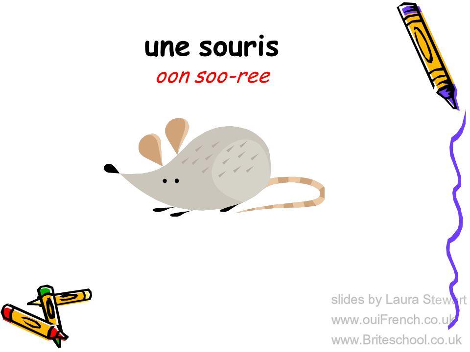une souris oon soo-ree