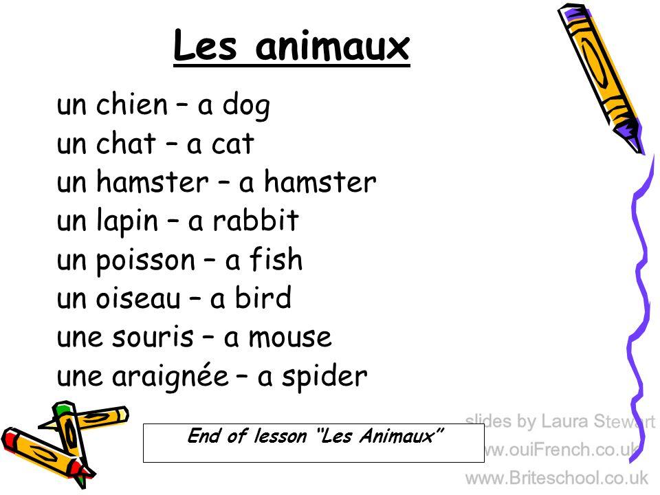 Les animaux un chien – a dog un chat – a cat un hamster – a hamster un lapin – a rabbit un poisson – a fish un oiseau – a bird une souris – a mouse une araignée – a spider End of lesson Les Animaux