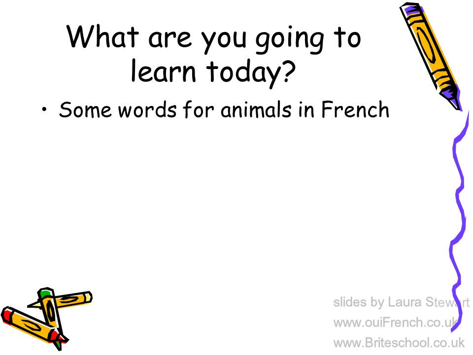 What are you going to learn today Some words for animals in French