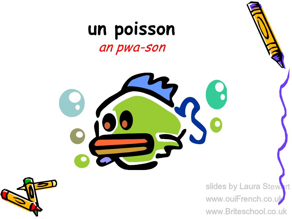 un poisson an pwa-son