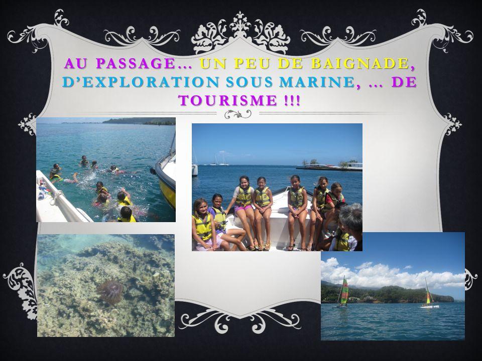 ET CEST REPARTI POUR UN TOUR!!!