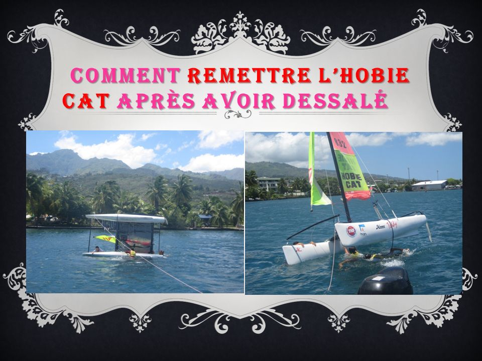 COMMENT REMETTRE LHOBIE CAT APRÈS AVOIR DESSALÉ