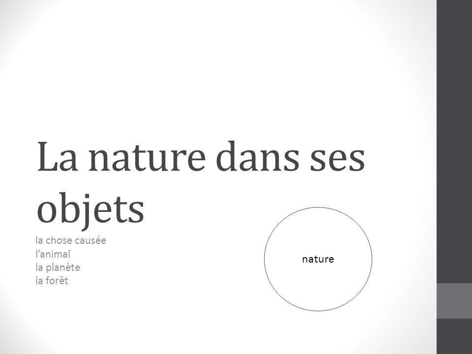 La nature dans ses objets la chose causée lanimal la planète la forêt nature