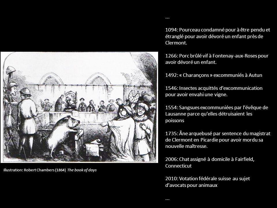 ... 1094: Pourceau condamné pour à être pendu et étranglé pour avoir dévoré un enfant près de Clermont. 1266: Porc brûlé vif à Fontenay-aux-Roses pour