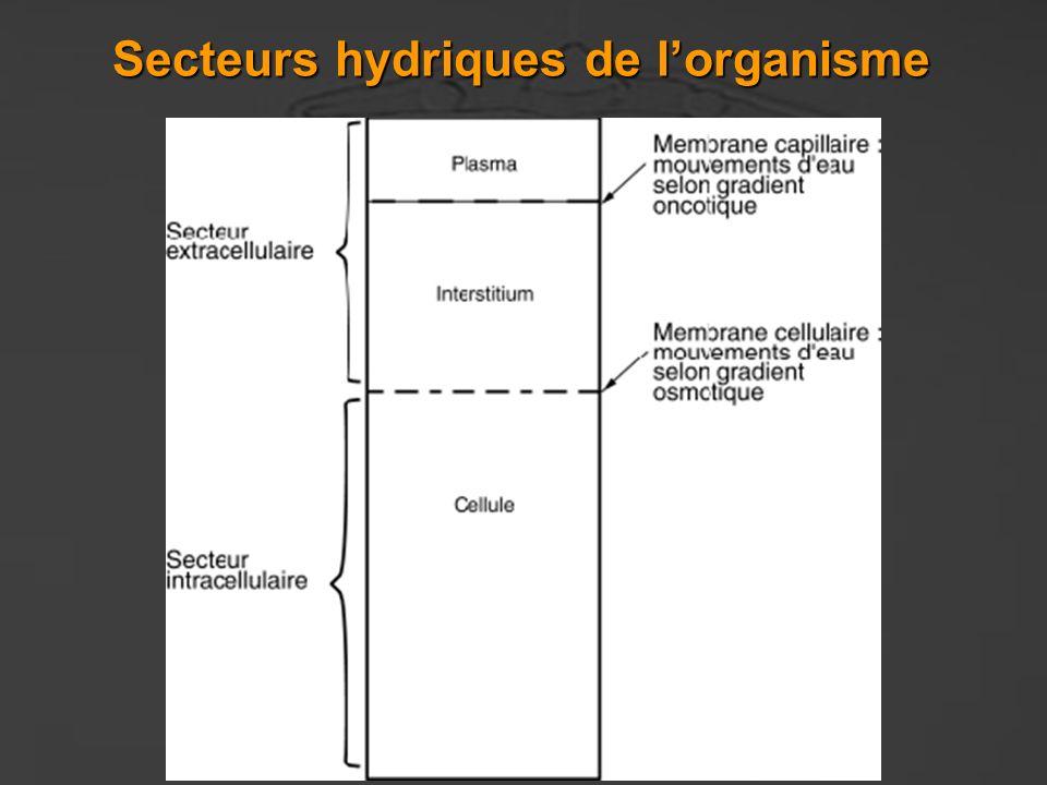 Secteurs hydriques de lorganisme