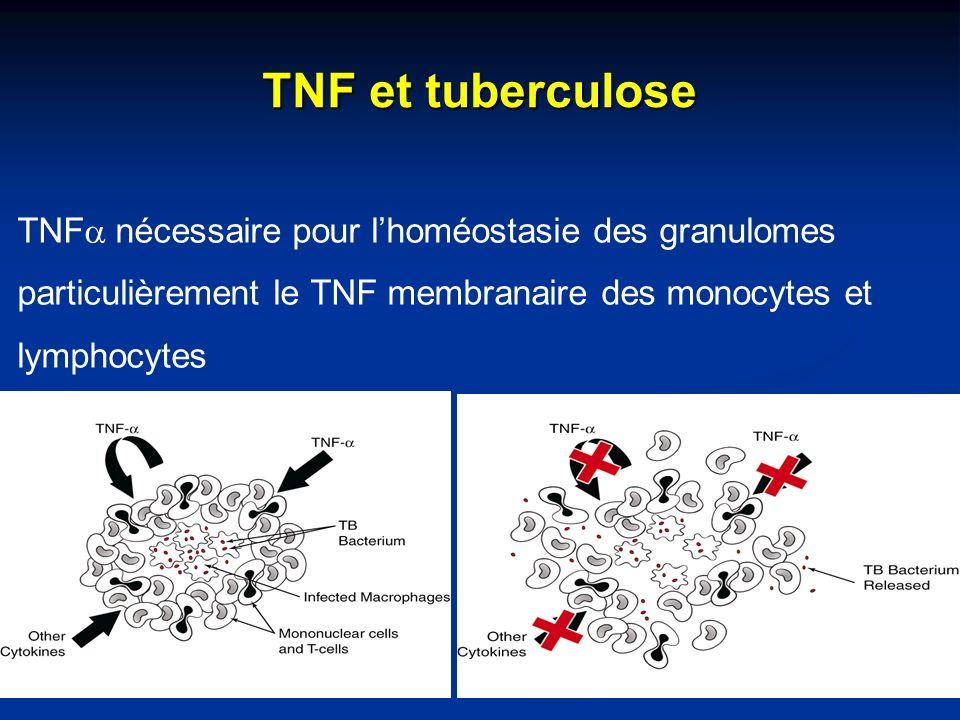TNF et tuberculose TNF nécessaire pour lhoméostasie des granulomes particulièrement le TNF membranaire des monocytes et lymphocytes