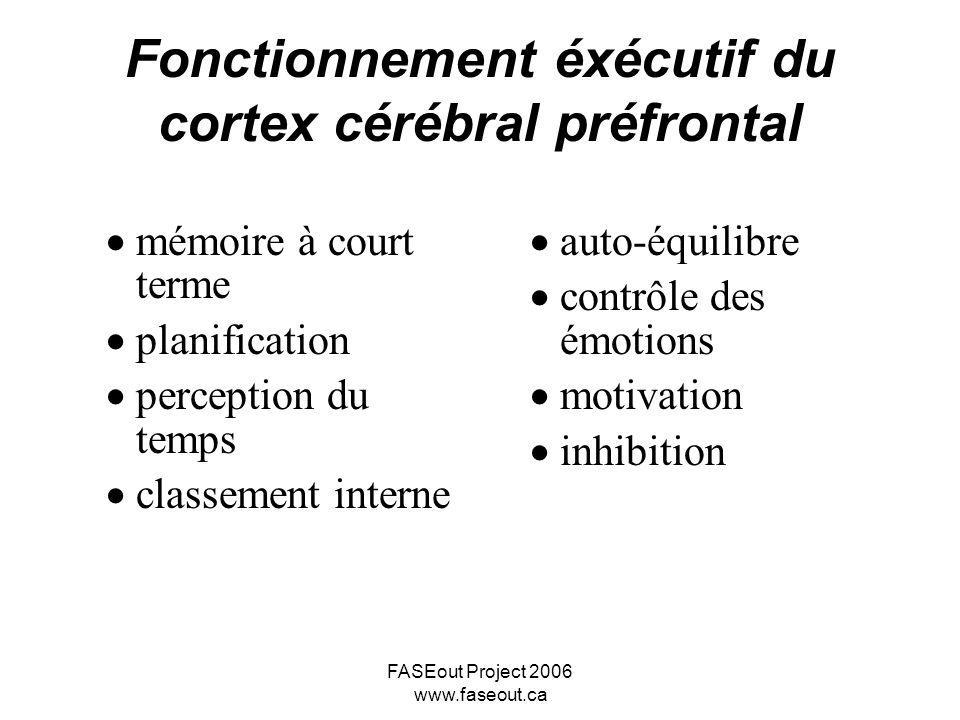 FASEout Project 2006 www.faseout.ca Fonctionnement éxécutif du cortex cérébral préfrontal mémoire à court terme planification perception du temps clas