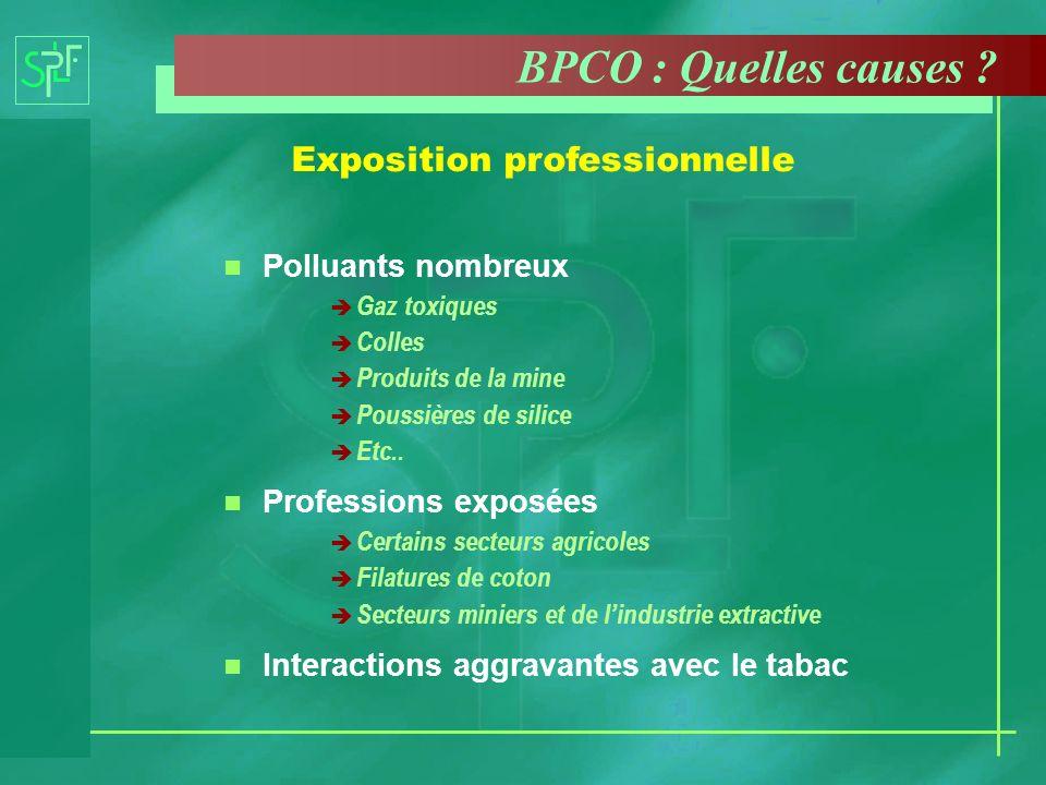 n Polluants nombreux è Gaz toxiques è Colles è Produits de la mine è Poussières de silice è Etc.. n Professions exposées è Certains secteurs agricoles