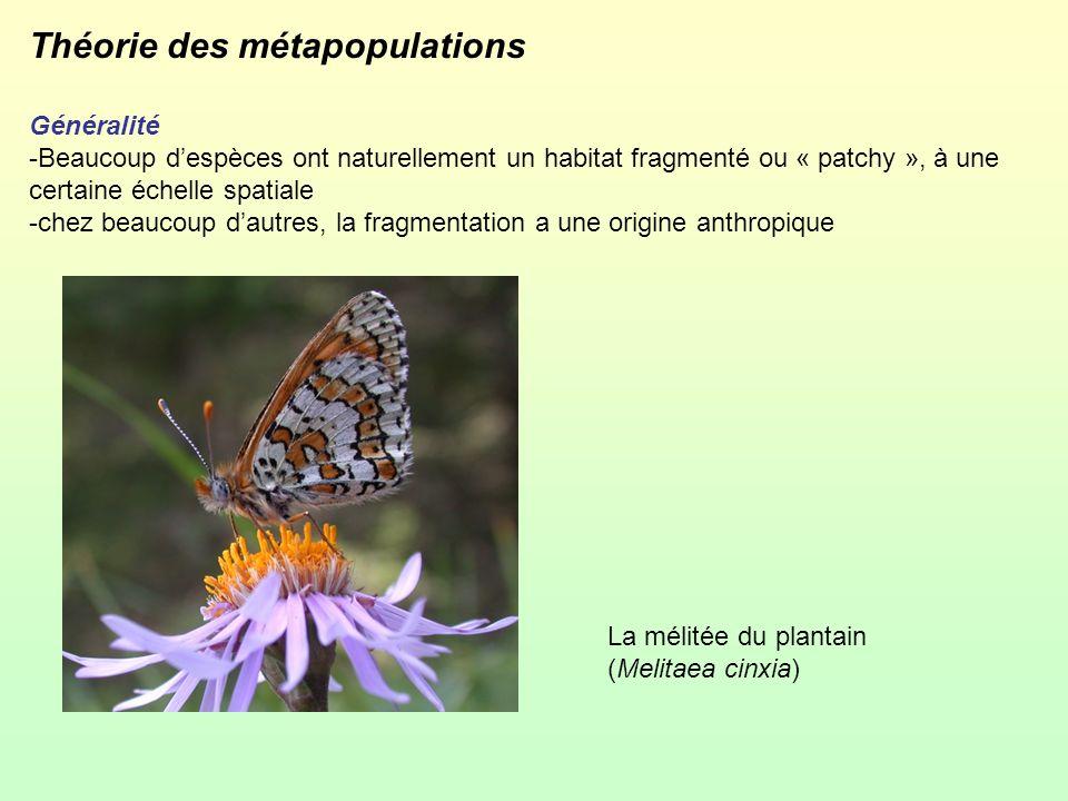 Théorie des métapopulations Généralité -Beaucoup despèces ont naturellement un habitat fragmenté ou « patchy », à une certaine échelle spatiale -chez