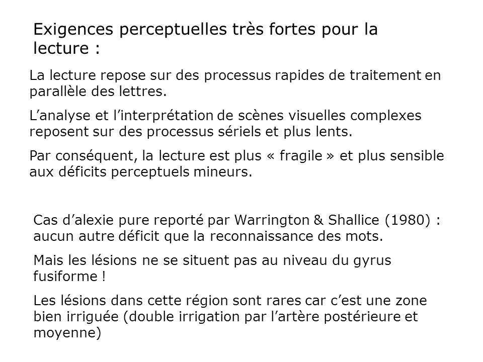 l'alexie pure : donc, plusieurs sources possibles… Régions occipitales Lobe temporal