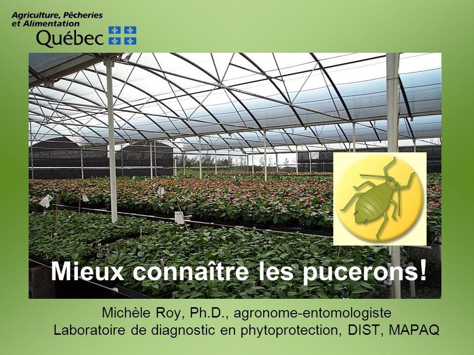 Michèle Roy, Ph.D., agronome-entomologiste Laboratoire de diagnostic en phytoprotection, DIST, MAPAQ Mieux connaître les pucerons !