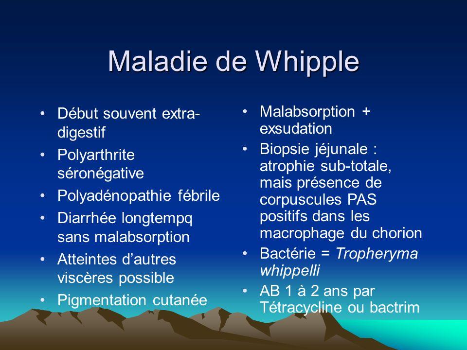 Maladie de Whipple Début souvent extra- digestif Polyarthrite séronégative Polyadénopathie fébrile Diarrhée longtempq sans malabsorption Atteintes dau
