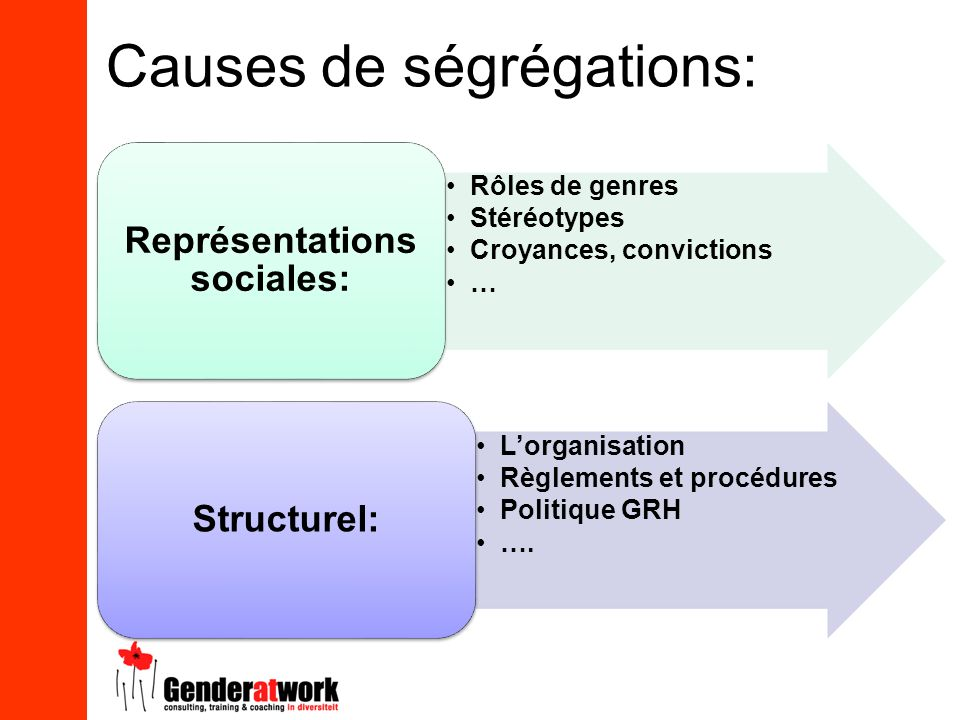 Causes de ségrégations: Rôles de genres Stéréotypes Croyances, convictions … Représentations sociales: Lorganisation Règlements et procédures Politiqu