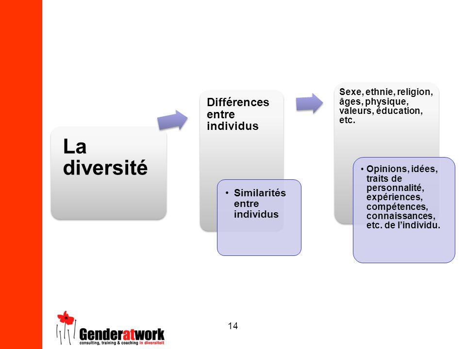 14 La diversité Différences entre individus Similarités entre individus Sexe, ethnie, religion, âges, physique, valeurs, éducation, etc. Opinions, idé