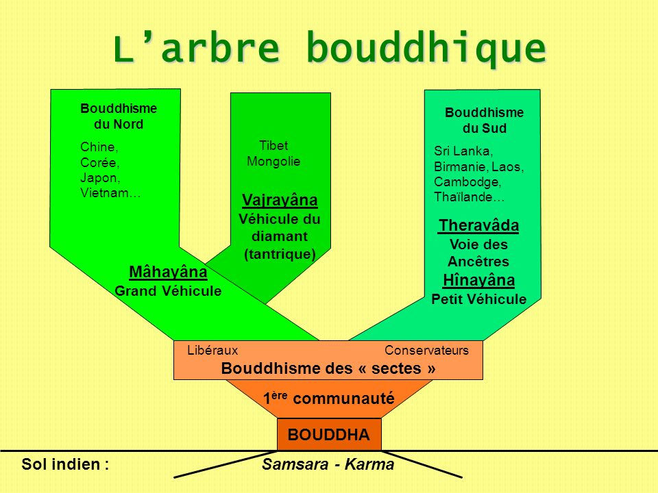 LibérauxConservateurs Bouddhisme des « sectes » 1 ère communauté BOUDDHA Larbre bouddhique Samsara - Karma Sol indien : Mâhayâna Grand Véhicule Bouddh