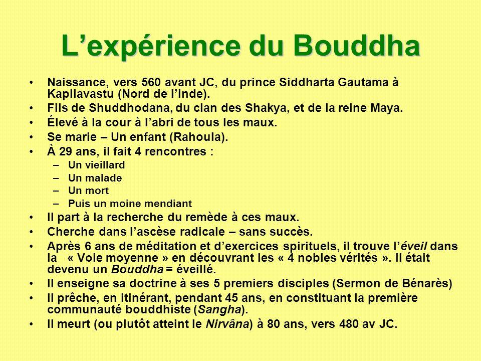 Lexpérience du Bouddha Naissance, vers 560 avant JC, du prince Siddharta Gautama à Kapilavastu (Nord de lInde). Fils de Shuddhodana, du clan des Shaky