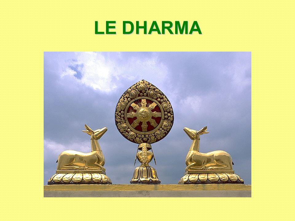 Les 3 véhicules MAHÂYÂNA – Grand Véhicule HÎNAYÂNA – Petit Véhicule VAJRAYÂNA – Véhicule du Diamant (tantrique ou tibétain) Pas de dieux Bouddhas et Bodhisattvas divinisés Divinités nombreuses Voie de lArhat Voie du Bodhisattva Le Lama, guide spirituel et chef temporel Lascèse La compassion Les rites : Theravâda Voie des Ancêtres «Terre Pure» (Amidisme) Zen (Chan) Bonnets rouges Bonnets jaunes Bouddhisme du Sud Bouddhisme du Nord Mantras Mudras Mandalas Élitiste Populaire Sauver les autres Le salut par soi-même Fidélité aux origines Syncrétisme
