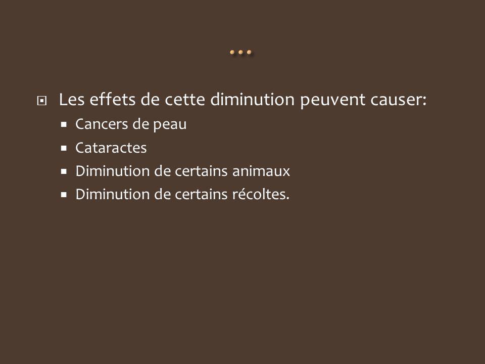 Les effets de cette diminution peuvent causer: Cancers de peau Cataractes Diminution de certains animaux Diminution de certains récoltes.