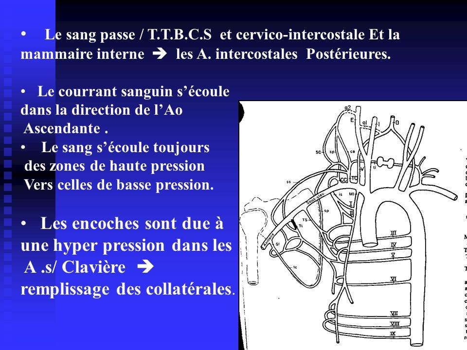 Le sang passe / T.T.B.C.S et cervico-intercostale Et la mammaire interne les A. intercostales Postérieures. Le courrant sanguin sécoule dans la direct