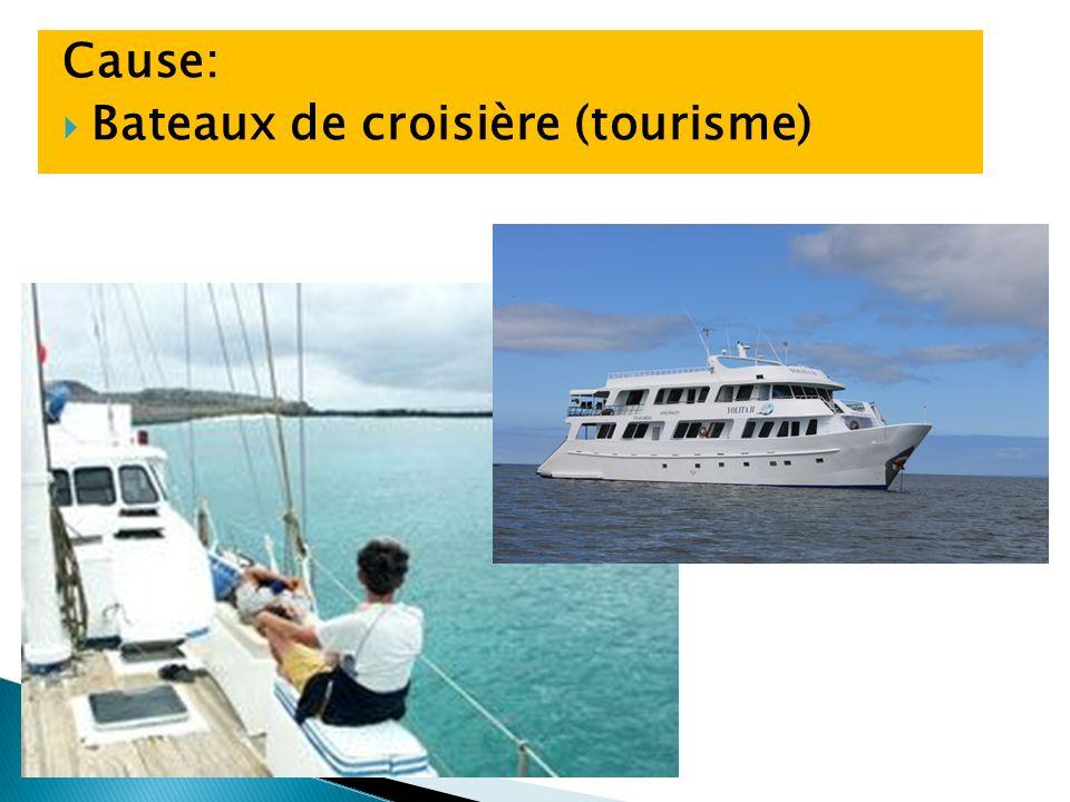 Cause: Bateaux de croisière (tourisme)