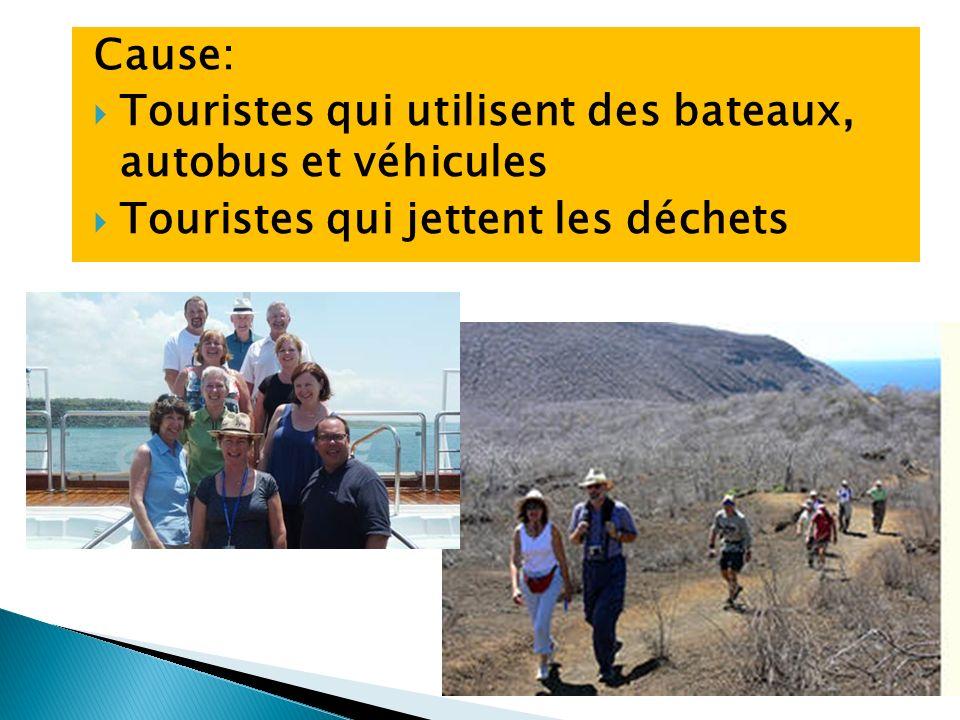 Cause: Touristes qui utilisent des bateaux, autobus et véhicules Touristes qui jettent les déchets