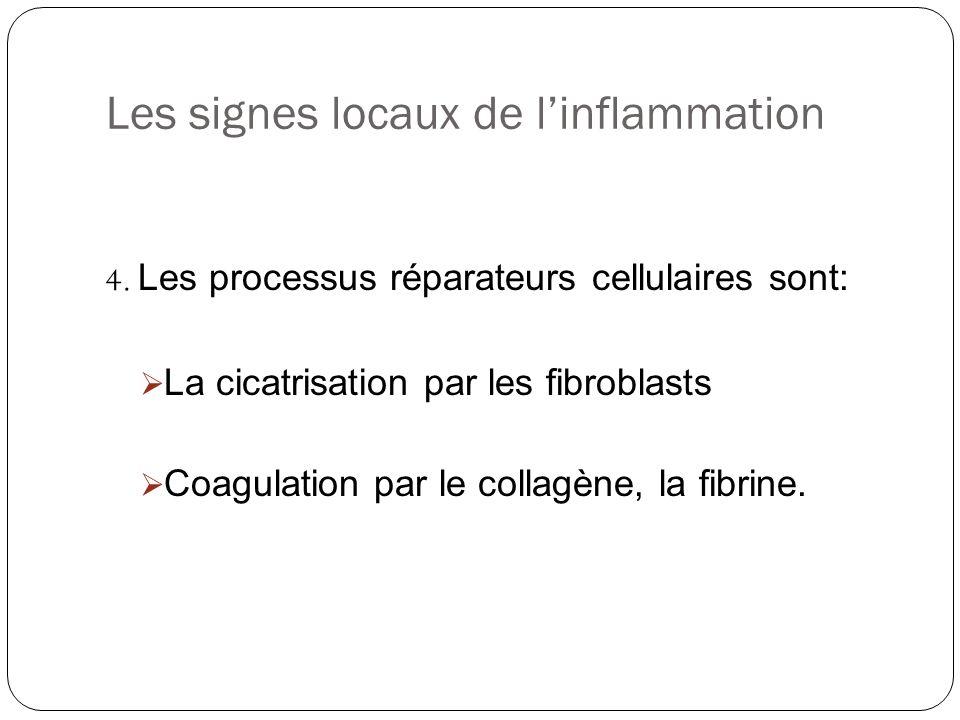 Les signes locaux de linflammation 4. Les processus réparateurs cellulaires sont: La cicatrisation par les fibroblasts Coagulation par le collagène, l