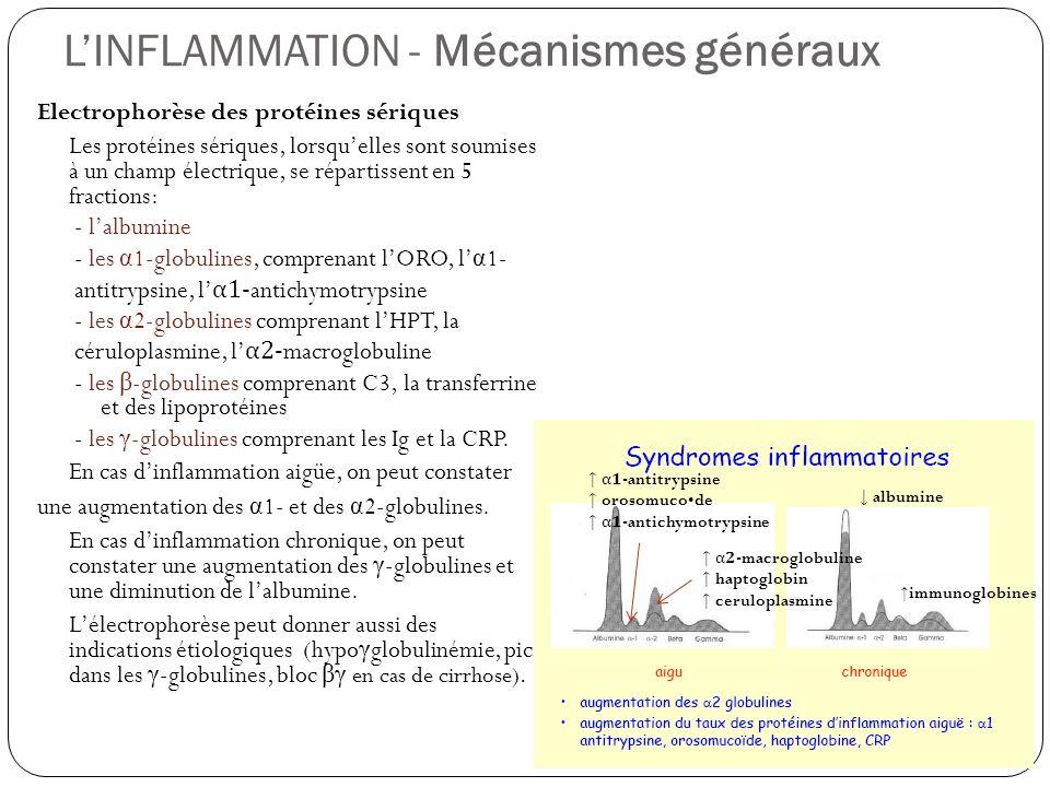 LINFLAMMATION - Mécanismes généraux Electrophorèse des protéines sériques Les protéines sériques, lorsquelles sont soumises à un champ électrique, se