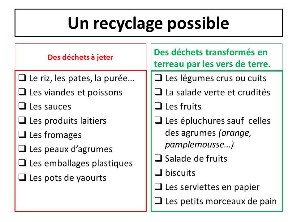 Un recyclage possible Des déchets à jeter Le riz, les pates, la purée… Les viandes et poissons Les sauces Les produits laitiers Les fromages Les peaux