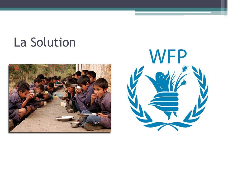 World Food Program (Programme Alimentaire Mondial) Cest la plus grande organisation au monde pour nourrir les faims Ils reçoivent beaucoup de largent, la nourriture, et les volontaires pour leur travail Ils essayent transporter la nourriture aux zones de crise