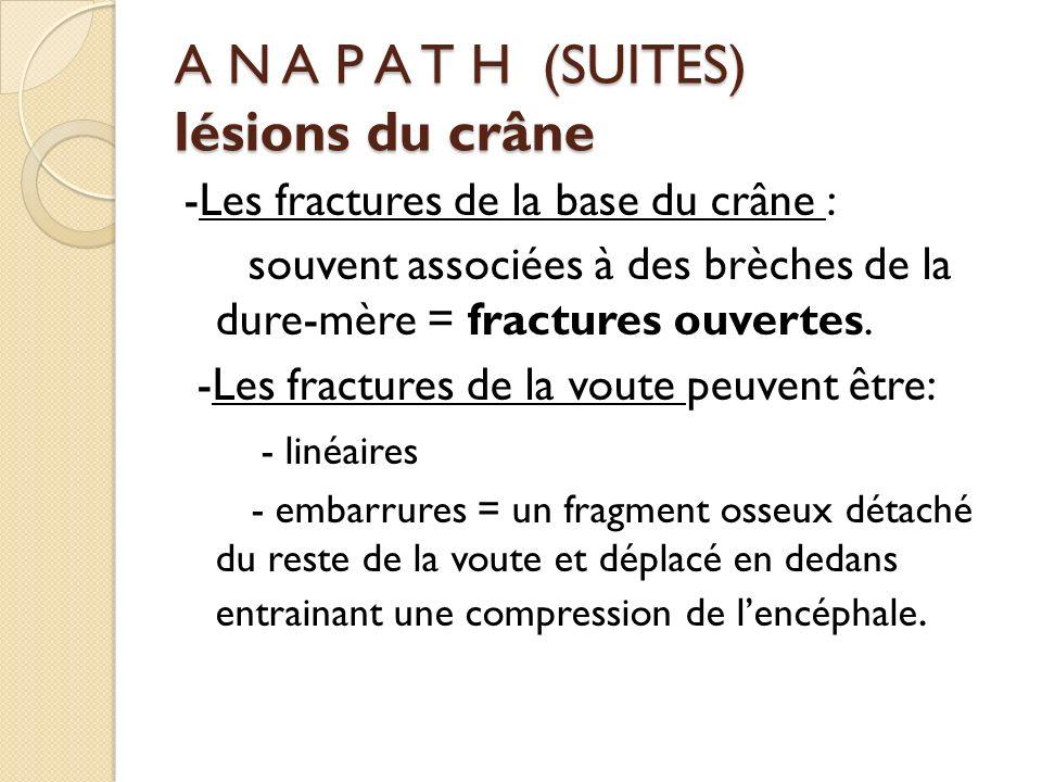 A N A P A T H (SUITES) lésions du crâne -Les fractures de la base du crâne : souvent associées à des brèches de la dure-mère = fractures ouvertes. -Le